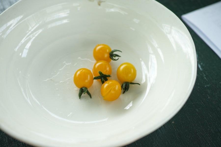初採れトマト