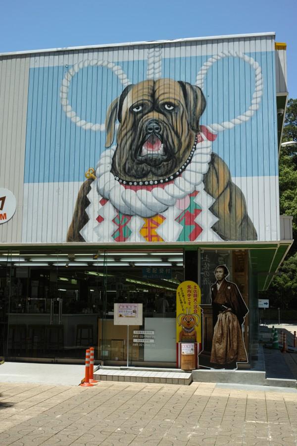 土佐犬ミュージアム