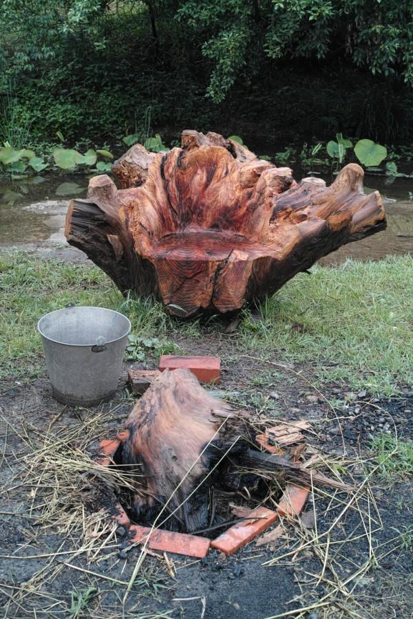 木の根っ子の椅子